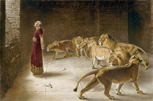Daniel Lion's Den 2
